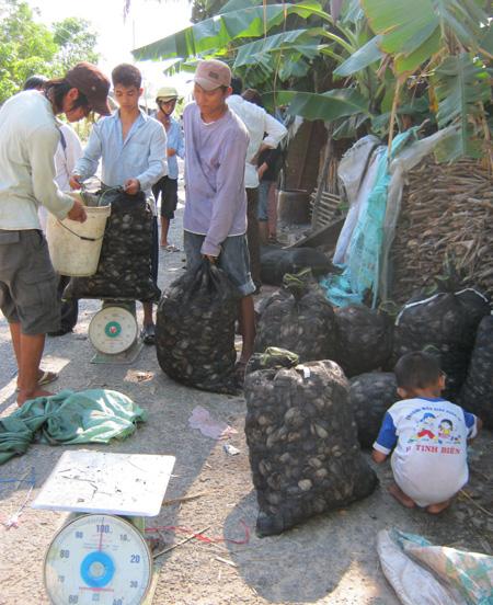 """Nhờ những """"chợ chồm hỗm"""" kiểu này trai làng cũng kiếm được từ 60.000 - 70.000 đồng/ngày"""